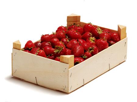 envases-fresas